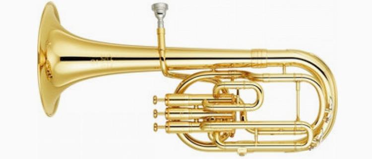 Tenor Horn Cases
